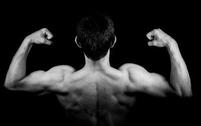 Wie du richtig Muskeln aufbaust